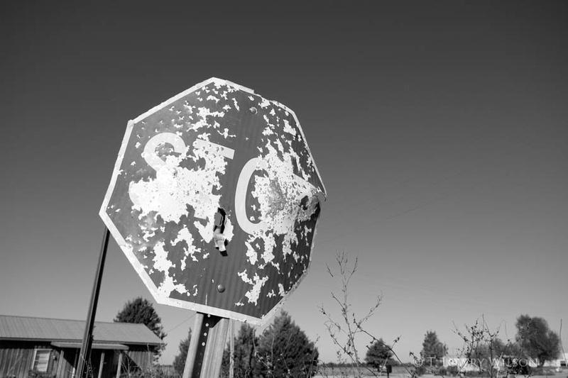 stop sign shotgun bullet mississippi delta